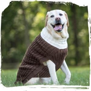 Panna Sweater