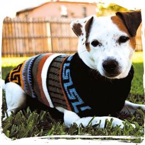 Allpa Sweater