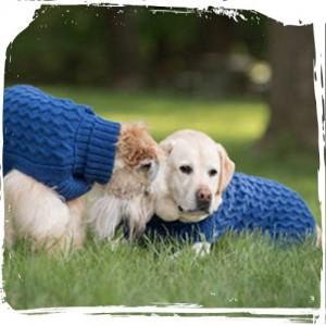 Blueglue Sweater
