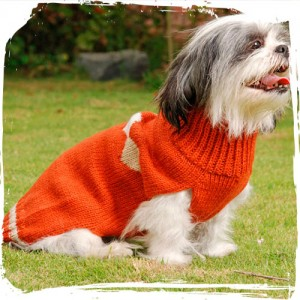 Sutti Sweater